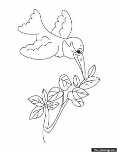 humming bird coloring pages