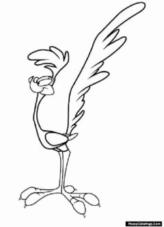 roadrunner coloring page