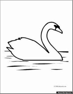 swans in the water coloring pages