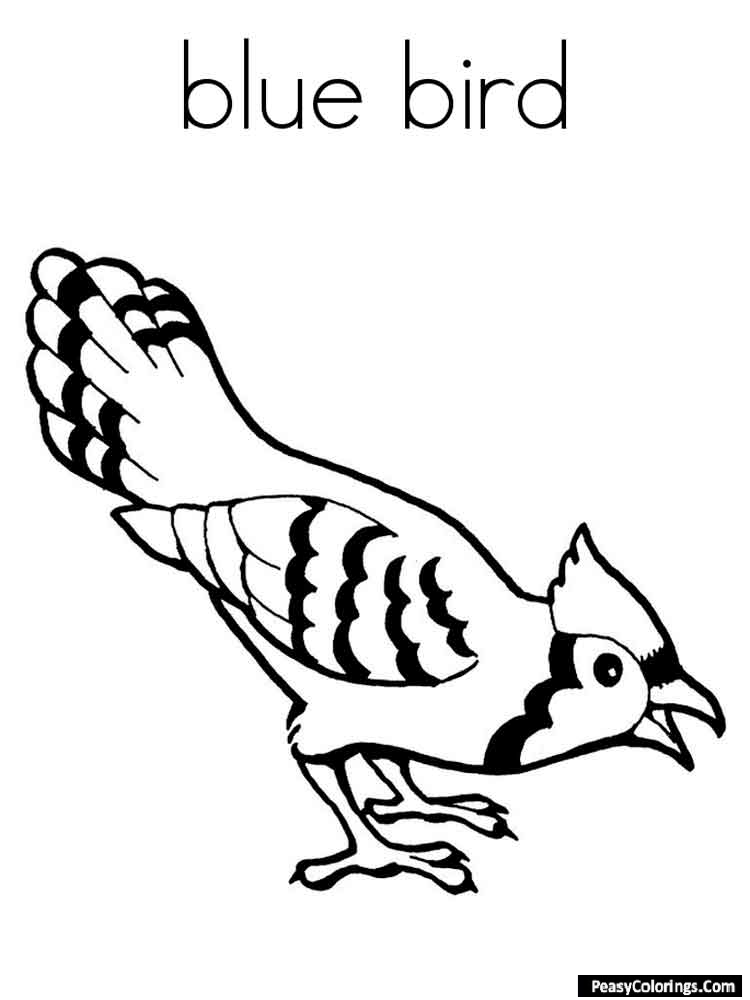 blue bird coloring pages