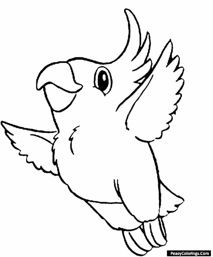 bluebird coloring pages