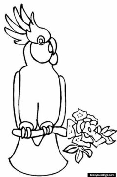 cockatoos sitting on a flowered branch coloring pages